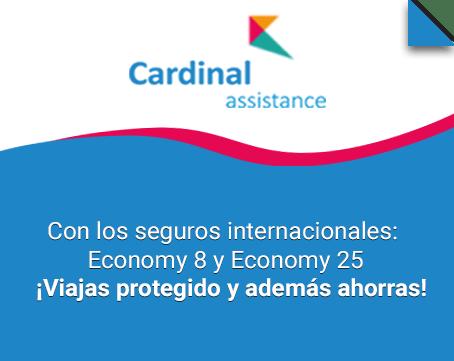 Con los seguros internacionales